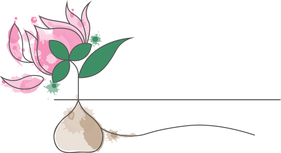 Lincolnshire Counselling The Garden Room Logo